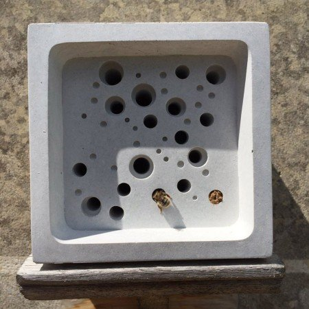 occupied large bee block bee hotell
